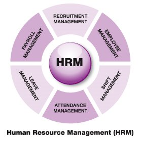 Human Resources what are the major subjects of issue assessments