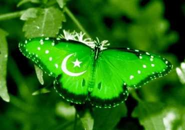 Brief History of Pakistan in English