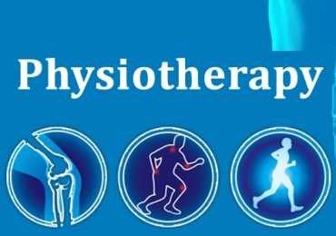 BSC Physiotherapy Scope