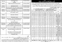 District Okara Schools Teachers Educators Jobs 2016 Application Form Last Date