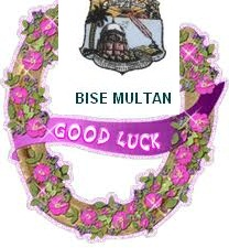 BISE Multan Matric Result 2012