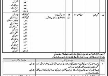 National Savings Department Islamabad Jobs, Clerical jobs