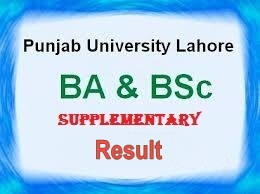 Punjab University BA/BSc Supplementary Result 2013
