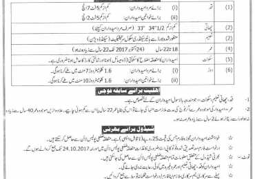 Traffic Warden Jobs in Lahore 2017 Punjab Police Department