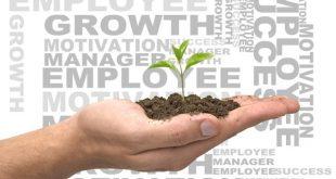 Role Of Entrepreneur In Pakistan Economy
