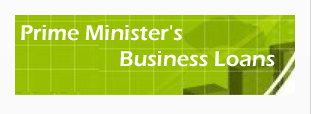 PM Loan Scheme Business Plan Sample Paper Feasibility Report