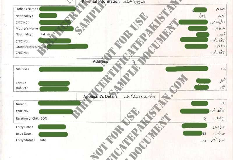 Nadra birth certificate form free sample and requirements yelopaper Choice Image