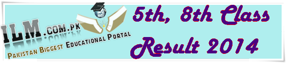Bahawalpur Bwp Board 5th and 8th Class Result 2014