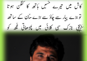 Wasi Shah Poetry Books Name List