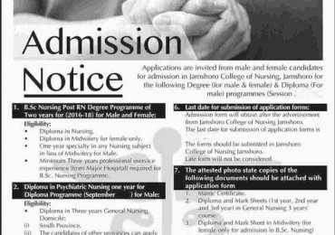 Directorate Of Nursing Sindh Karachi Admission 2018 Form, Last Date