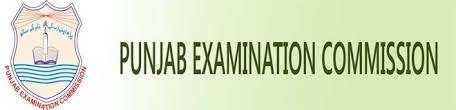 PEC 5th Class Past Papers Download Old Papers