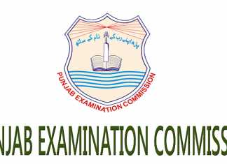PEC 8th Class Past Papers 2017, 2016 Old Papers Free Download