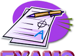 PEC 8th Class Past Papers 2017 English, Urdu Medium Old Papers