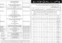 Punjab Educators Jobs 2016 for District Sheikhupura