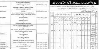 Punjab Educators Jobs 2016 for District Sheikhupura