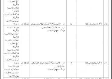 Anti Narcotics Force Rawalpindi Sub Inspector, ASI, Constable Jobs 2018 Form