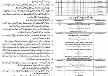 District Khanewal, Multan Educator Jobs 2014-2015 Form, Interview Schedule