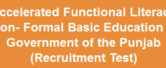 Literacy and Non Formal Basic Education NTS Test Result 2015 Answer Keys