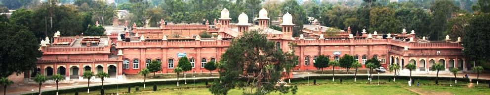Agriculture University Faisalabad Entry Test Result 2018 UAF Online