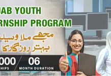 Punjab Youth Internship Program 2015-2016 Online Apply