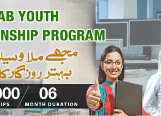 Punjab Youth Internship Program 2015-2016 Online Apply
