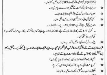 PEEF Scholarship 2019 For Sindh Undergraduate peef.org.pk Form Eligibility Date
