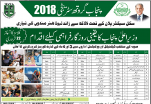TEVTA Short Courses In Lahore 2016 Admission Form, Fee, Duration