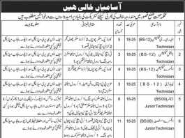 Health Department Kasur Jobs 2016 Application Form Date Advertisement