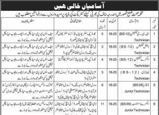 Health Department Kasur Jobs 2016 Application Form Date Advertisement