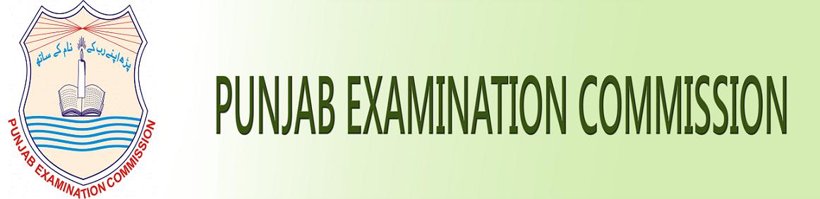 PEC Punjab Board 5th Class Result 2019