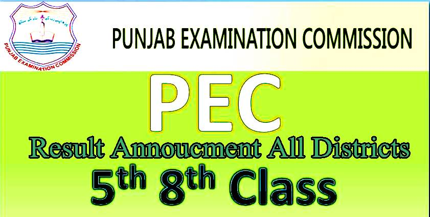 PEC 5th and 8th Class Result 2017