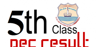PEC 5th and 8th Class Result Gazette 2018 Download Online