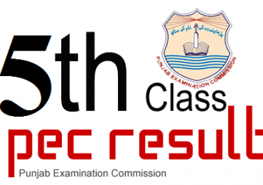 PEC 5th and 8th Class Result Gazette 2017 Download Online