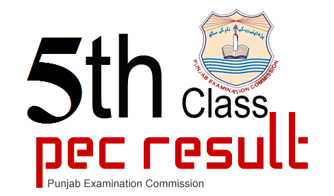 PEC 5th And 8th Class Result Gazette 2019 Download Online
