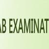 PEC Gujranwala Board 8th Class Result 2017 Sialkot, Hafizabad