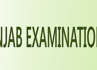 Sialkot 8th Class Result 2020 Hafizabad