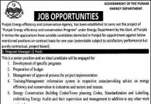 Government Punjab Energy Department Jobs 2016 Apply Online Last Date