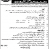 Cadet College Okara Admission 2018, 8th Class Entry Test Result