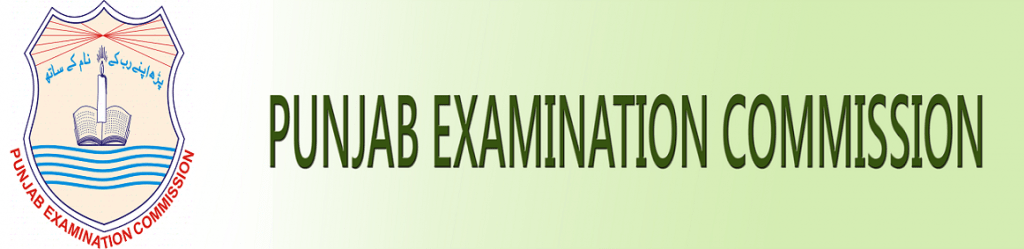 Pec.edu.pk Result 2019 5th, 8th Class Online By Roll Number