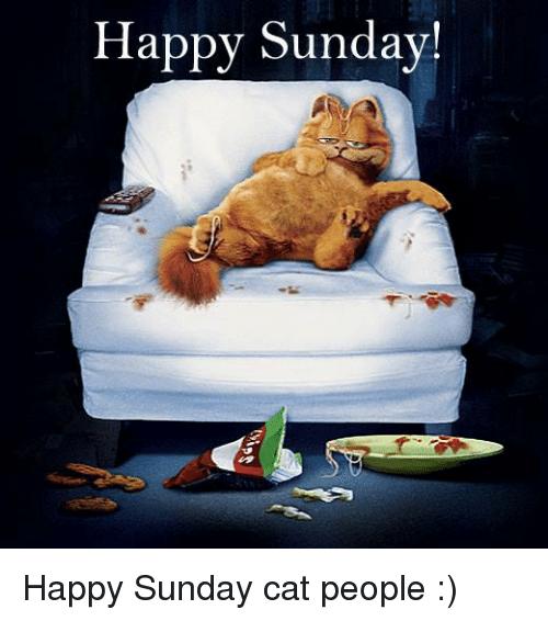 Happy Sunday Jokes Happy Sunday Sms Quotes Funny Texts