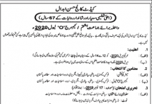 Cadet College Hasan Abdal Admission 2020 8th Class Form Download