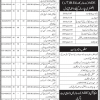 Education And Literacy Department Sindh ADE, B. Ed Admissions 2019