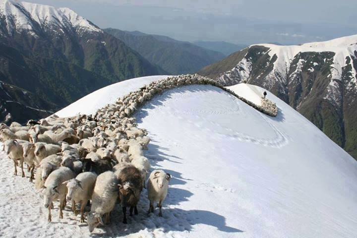 Top 10 Snowfall Places in Pakistan, 7