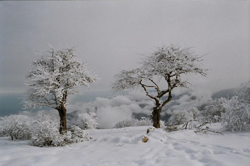 Top 10 Snowfall Places in Pakistan, Ziarat