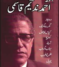 Ahmad Nadeem Qasmi Books and Novel Names List