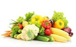 Off Season Vegetable Farming In Pakistan Cost Business Plan Feasibility