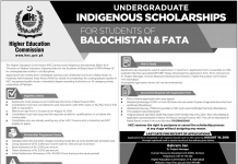 HEC Undergraduate Indigenous Scholarship 2018 Apply Online Advertisement