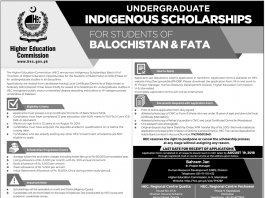 HEC Undergraduate Indigenous Scholarship 2018 Apply Online Advertisement