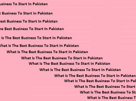 What Is The Best Business To Start In Pakistan