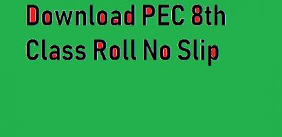 PEC 8th Class Roll No Slip 2021 Online Download